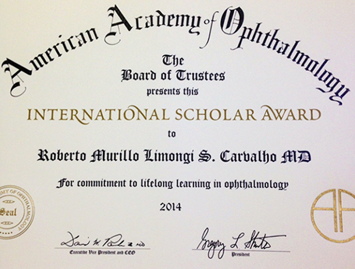 instituto-de-olhos-blog_international-scholar-award